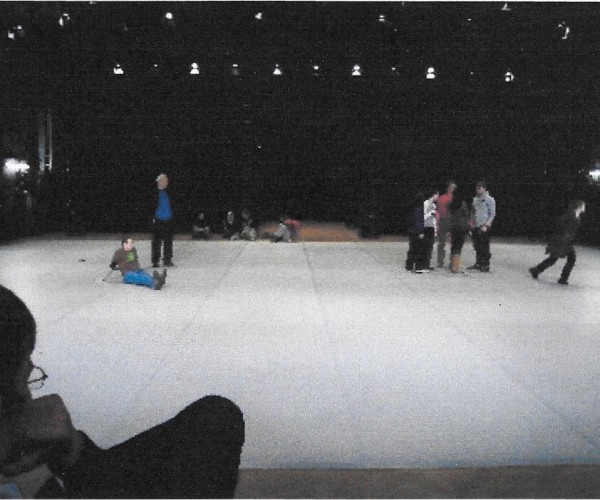 28) Sioned Huws walk & talk, 2008, curated by Phillipp Gehmacher, Tanzquartier, Vienna, 2008